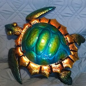 New gorgeous turtle-shinny and beautiful